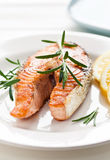 Salmon Steak fotografia stock libera da diritti