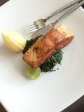 Salmon Steak Fotografie Stock
