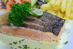 Salmon Steak fotografia stock