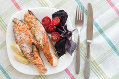 Salmon steak with cherry tomatoes basil Royalty Free Stock Photography