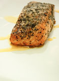 Salmon steak (close-up) Stock Image