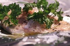 Salmon Steak con aneto e prezzemolo Immagine Stock Libera da Diritti