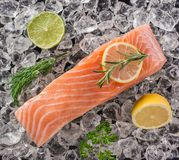Salmon steak on crashed ice Stock Photography