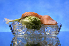 Salmon steak on crystal clear ice cubes Royalty Free Stock Photo