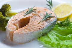 Salmon steak decorated with vegetables Stock Images