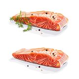 Salmon steak with dill isolated vector hand drawn illustration Stock Images