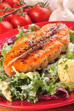 Salmon steak with green salad Stock Image