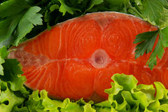 Salmon steak with greens Royalty Free Stock Photo