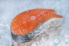 Salmon steak on ice Stock Images