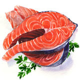 Salmon steak red fish. Watercolor painting on white background Royalty Free Stock Photos