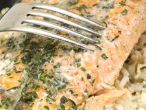 Salmon Steak With Rice Stock Photography