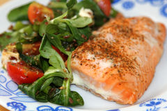 Salmon Steak with Salad Royalty Free Stock Photo