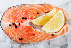 Salmon steak with slices of lemon. And black pepper on the ice Royalty Free Stock Photography