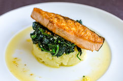 Salmon Steak with Spinach and Mashed Potato Royalty Free Stock Photos