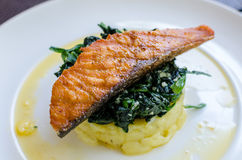Salmon Steak with Spinach and Mashed Potato Stock Photos
