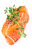 Salmon steak with thyme Royalty Free Stock Photos