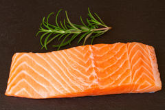 Salmon steak with twig of rosemary Stock Images