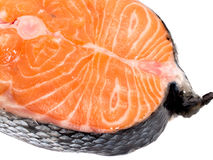 Salmon Steak (unprepared) Royalty Free Stock Photo