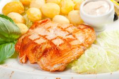 Salmon Steak with Vegetable Royalty Free Stock Photography
