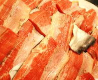 Salmon steaks Stock Photos