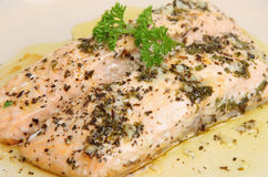 Salmon Steaks Baked with Herbs Royalty Free Stock Images
