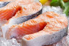 Salmon steaks Stock Images