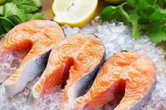 Salmon steaks Stock Photography