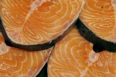 Salmon steaks on the market Royalty Free Stock Photo