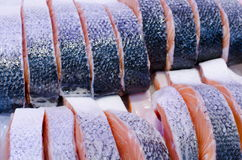 Salmon Steaks Royalty Free Stock Photography