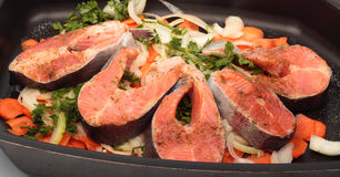 Salmon steaks with vegetables on the cook griddle. Prepared for the oven Royalty Free Stock Photography