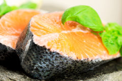 Salmon on stone with basil and lemon close up Stock Photography