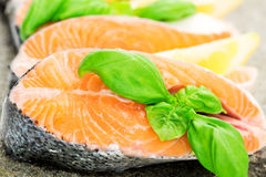 Salmon on stone with basil and lemon macro Royalty Free Stock Image