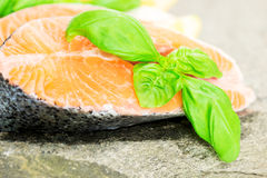 Salmon on stone with basil and lemon macro Stock Images