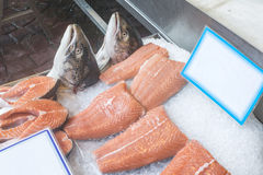 Salmon in store. Salmon on ice in store. Greece, Athens, Piraeus Stock Photography