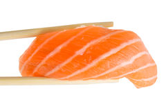 Salmon sushi nigiri isolate on white background Royalty Free Stock Images