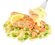 Salmon And Tagliatelle Pasta Meal Isolated On White. Pink salmon fillet and tagliatelle pasta meal isolated on a white background Stock Photos
