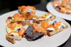 Salmon tapas on white plate, hard light royalty free stock images