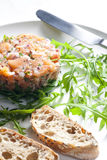 Salmon tartare. With green ruccola Stock Image