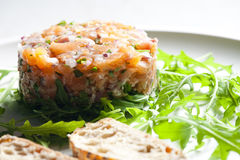 Salmon tartare Stock Images