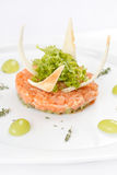 Salmon tartare Stock Photos