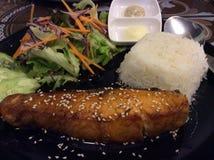 Salmon teriyaki Стоковые Фотографии RF