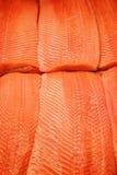 Salmon texture Stock Image