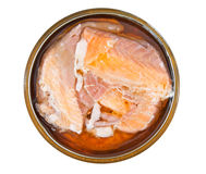 Salmon in a tin Royalty Free Stock Images