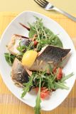 Salmon trout fillets and salad greens Stock Photography