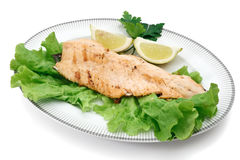 Salmon trout with lettuce Stock Photography