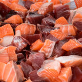 Salmon and Tuna Royalty Free Stock Photo