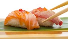 Salmon and tuna sushi nigiri Royalty Free Stock Image