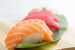 Salmon and tuna sushi nigiri Royalty Free Stock Image