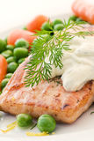 Salmon with vegetable Royalty Free Stock Photography