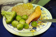 Salmon with vegetable garnish. A close up of a plate of salmon with vegetable garnish Stock Images